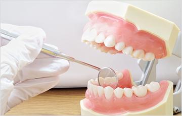 永久歯を抜歯する可能性が低くなる