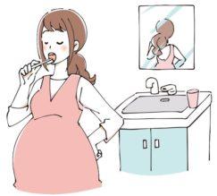妊娠中の歯磨き